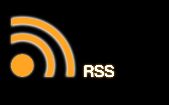 Allow Readers to Subscribe Separate RSS Feed for Each Category in WordPress